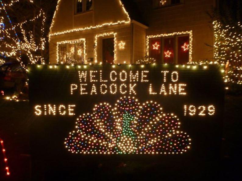 Peacock Lane Portland Christmas Light Limo Tour