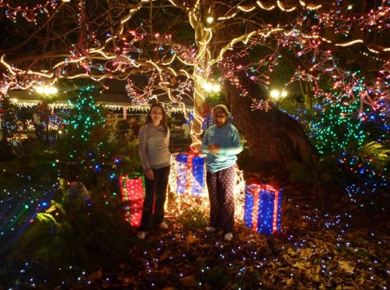Portland Christmas Light Limo Tours Queen-Ann-Victorian-Mansion-Miracle-of-a-Million-Lights
