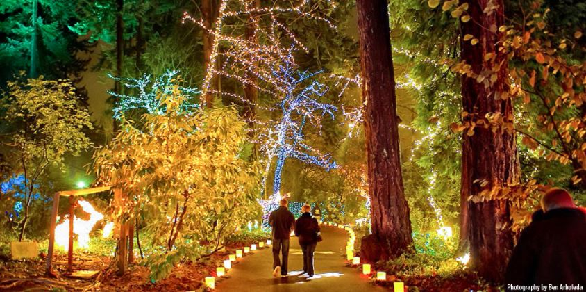 The Grotto Portland Christmas Light Limo Tours