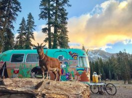 RV Living in Oregon - Northwest Airstream RV Adventures