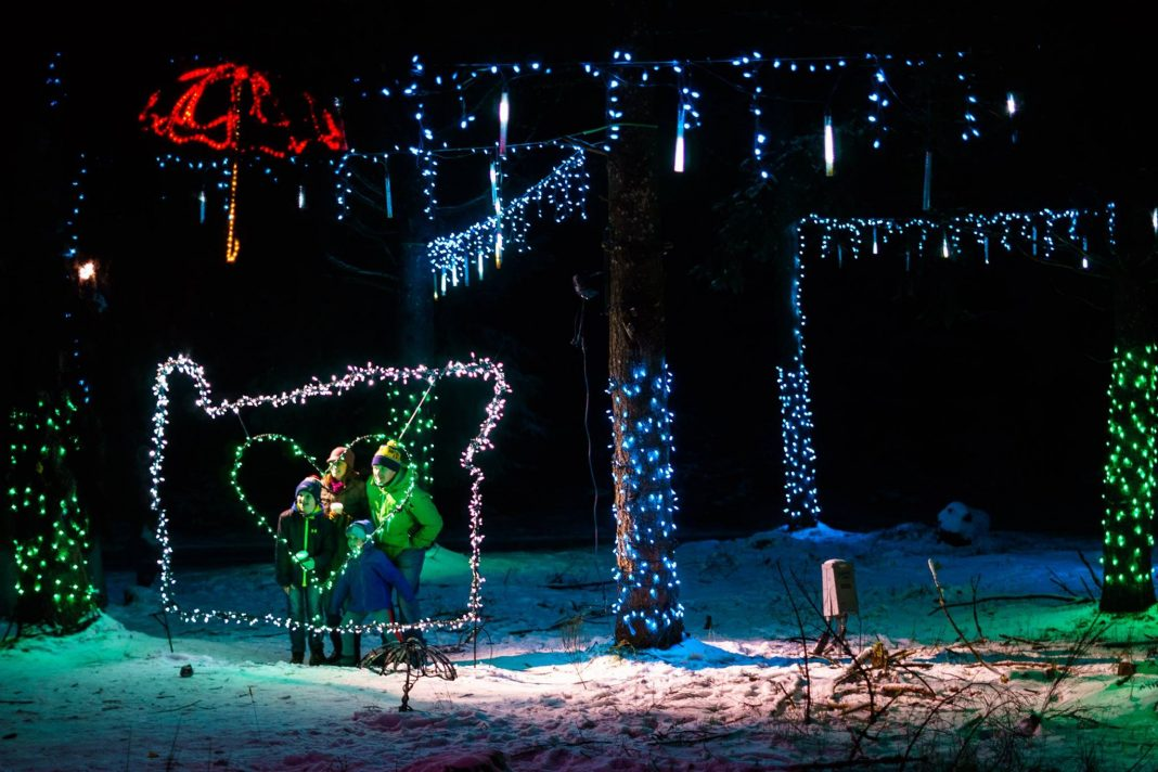 this winter walk in oregon features over 600 000 christmas lights