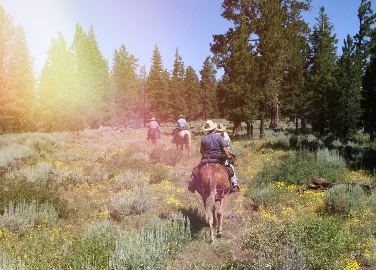 horseback riding sunriver