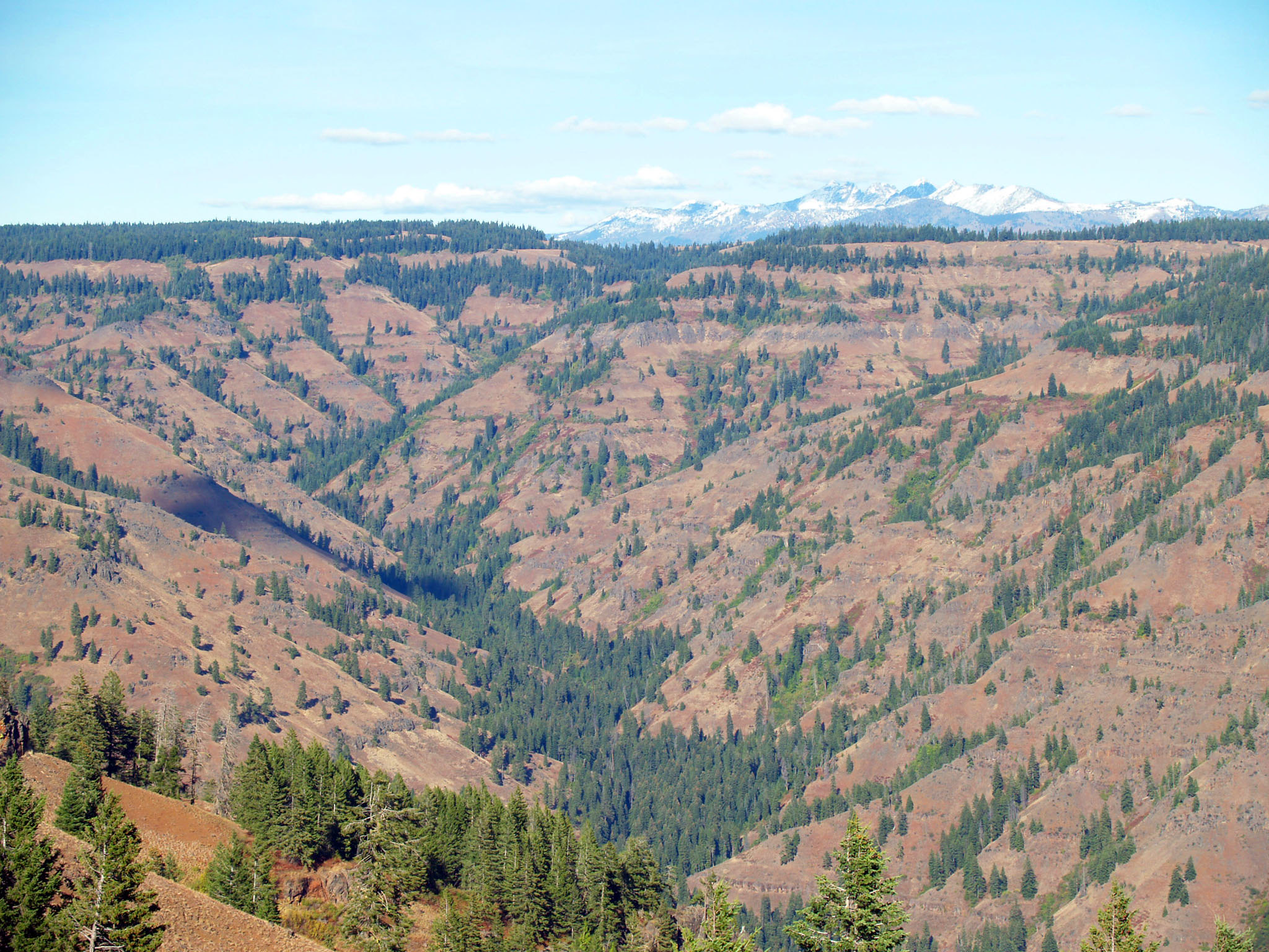 Hell's Canyon Overlook Oregon view