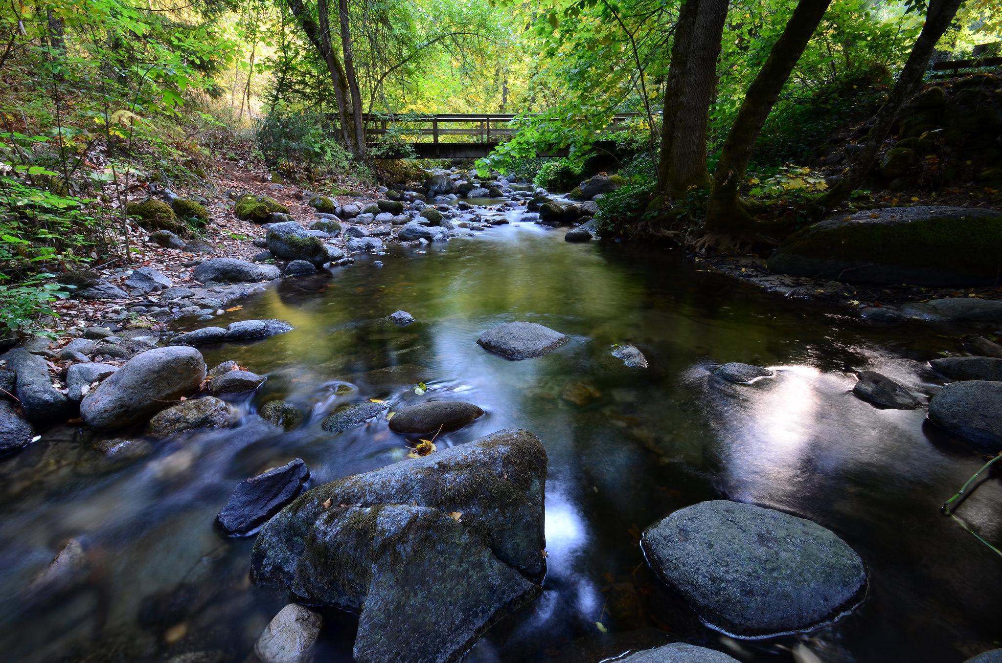 Ashland Oregon Lithia Park Ashland Creek Things To Do