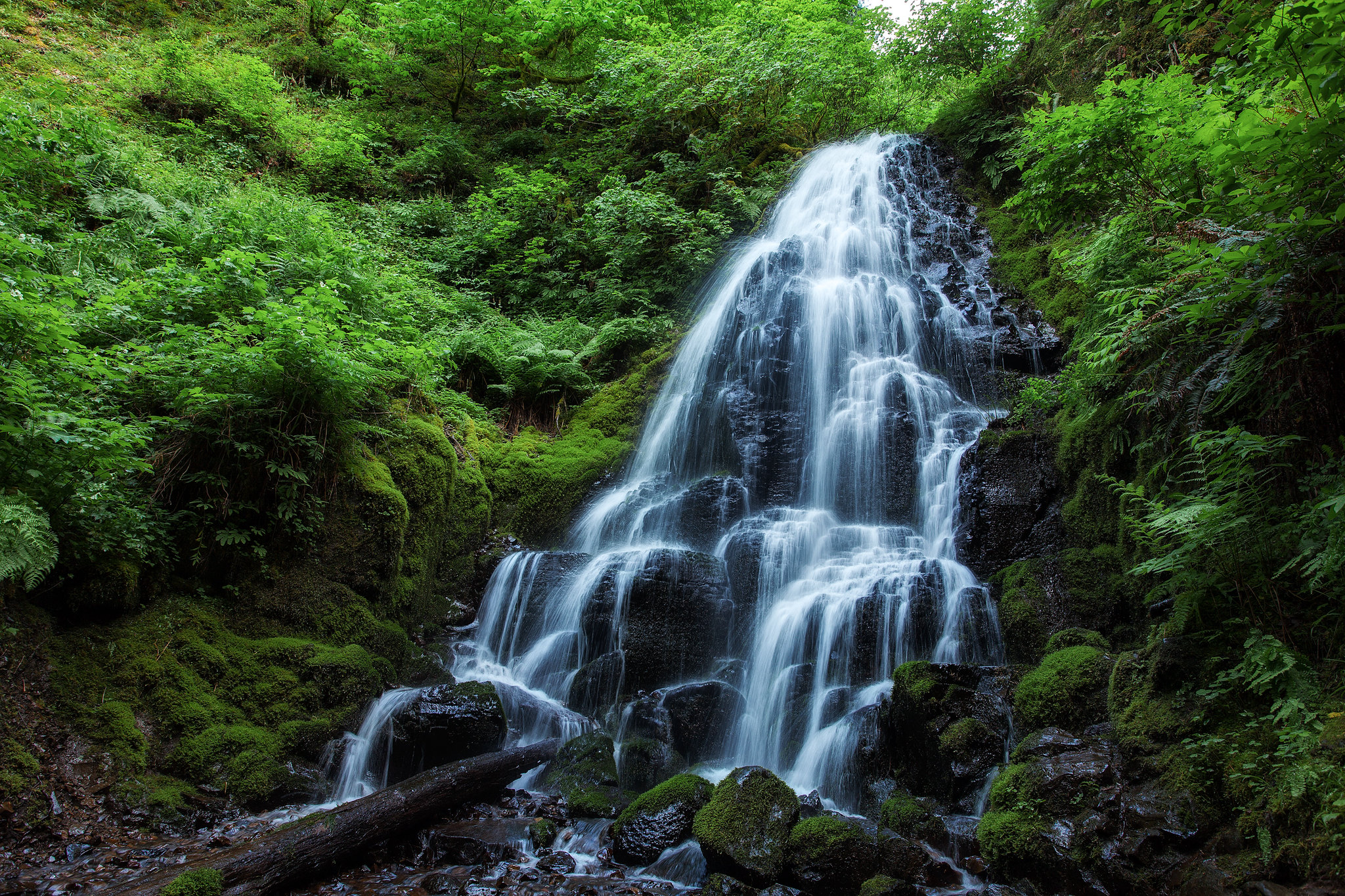 Oregon's Best Waterfalls to Hike To