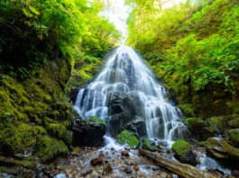 Cool waterfalls in Oregon hiking