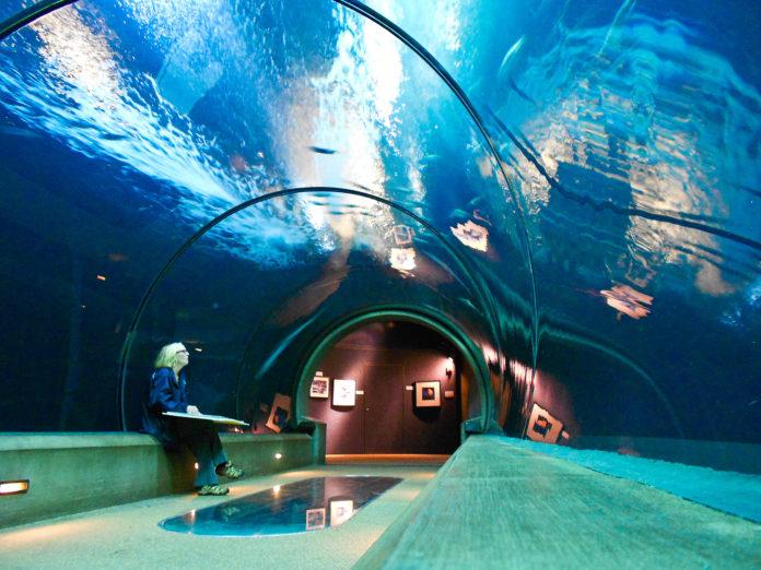 aquarium closed covid 19 Oregon closures