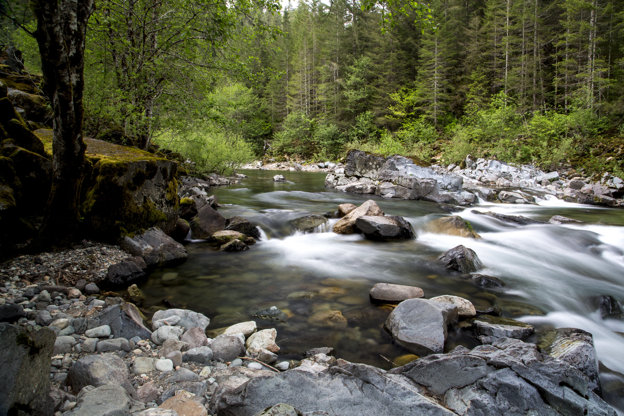 Quartzville Creek Wild And Scenic River Photo By The Bureau of Land Management via Flickr CC2