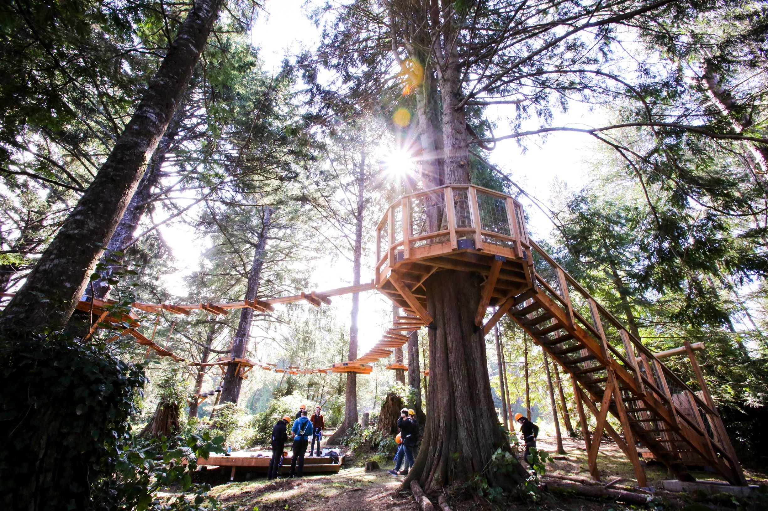 Oregon Bucket List Aerial Park Coast Salishan
