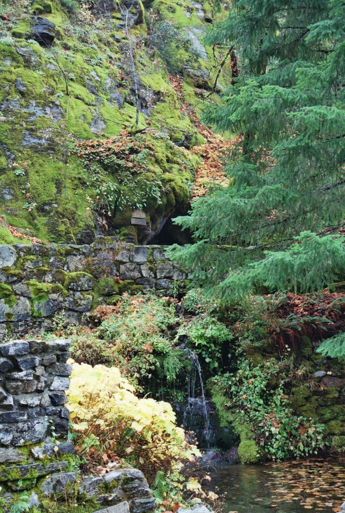 Cave Creek Ryver Styx Oregon Caves Underground River