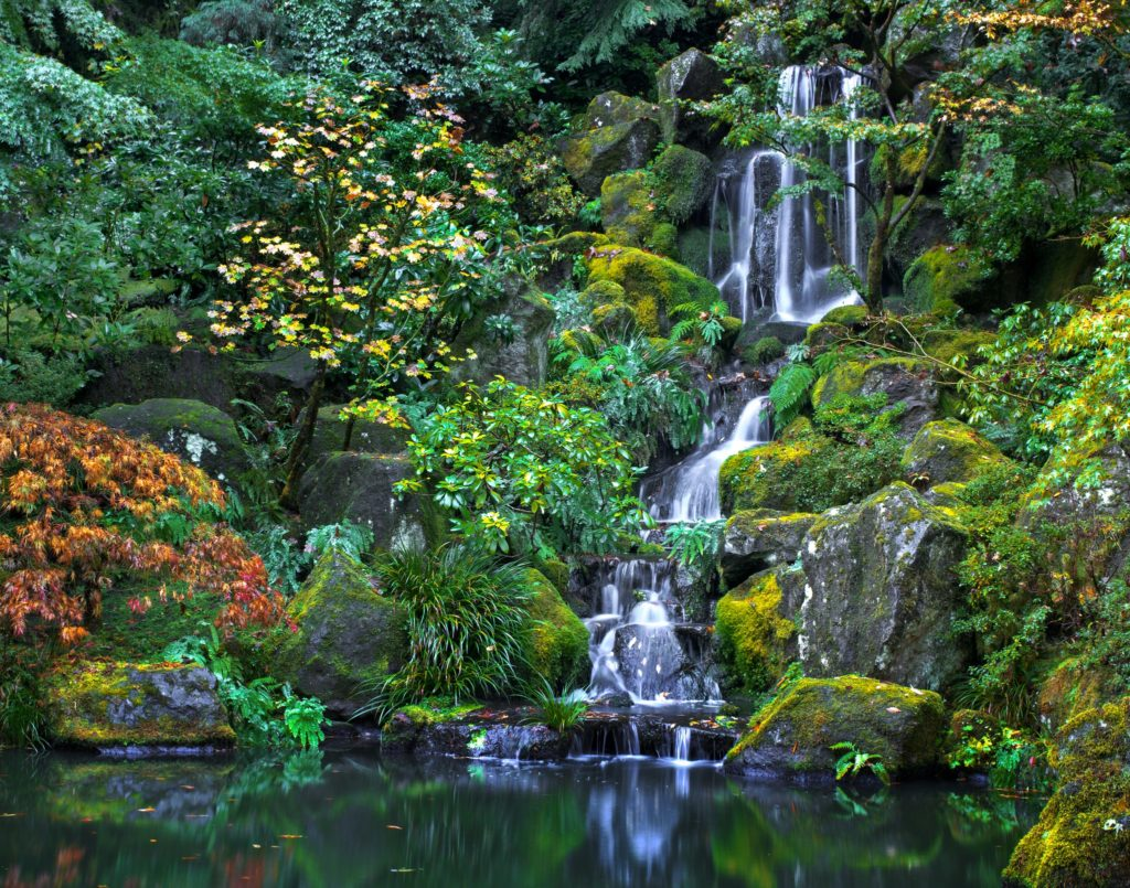 World Class Japanese Garden Portland Oregon Things To Do