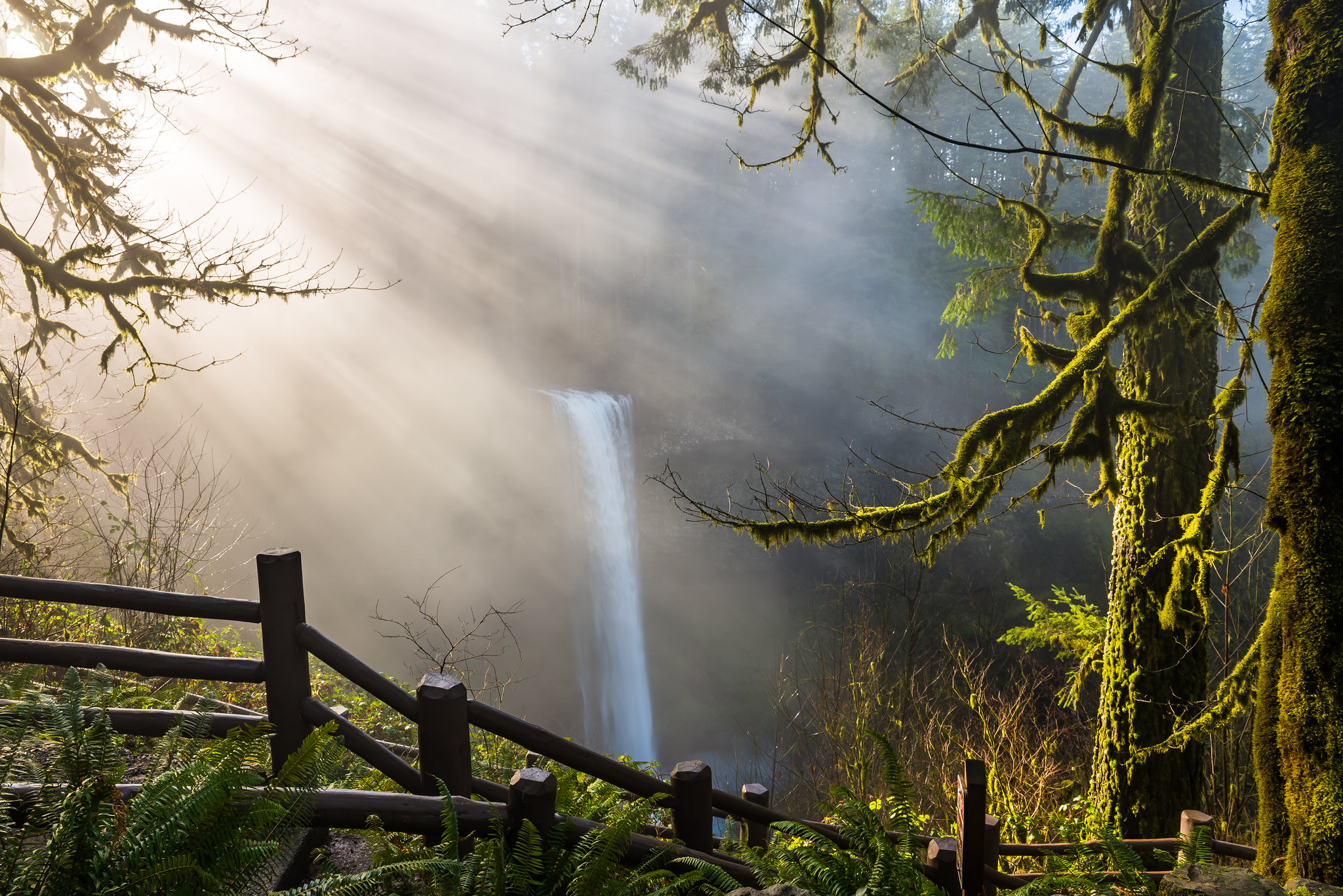 A gorgeous waterfall in the fog.