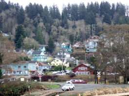 Houses on a wooded hill in Astoria Oregon.