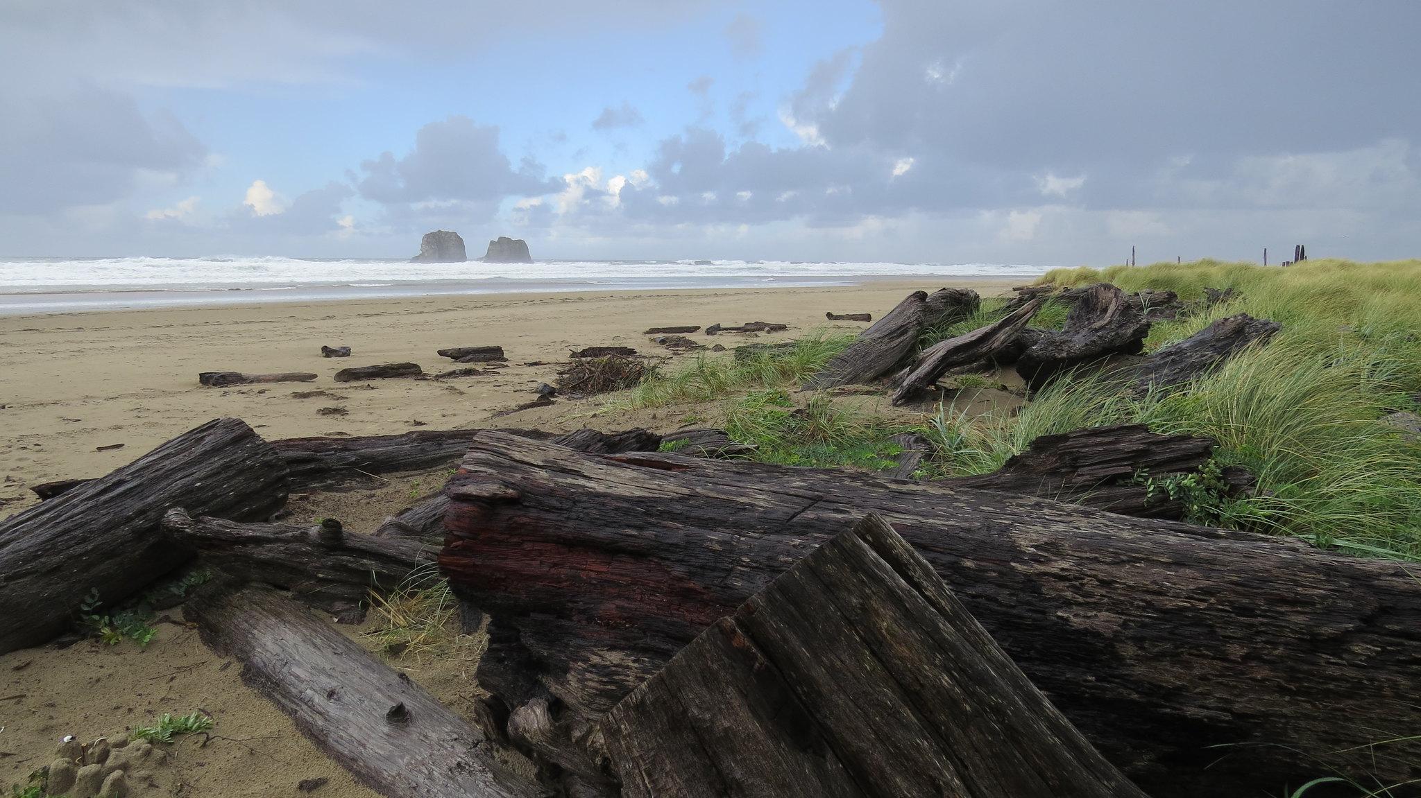 Driftwood on Rockaway Beach with a cloudy sky.