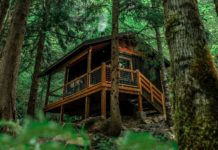 The gorgeous Oregon cabin surrounded by green trees and cabin deck