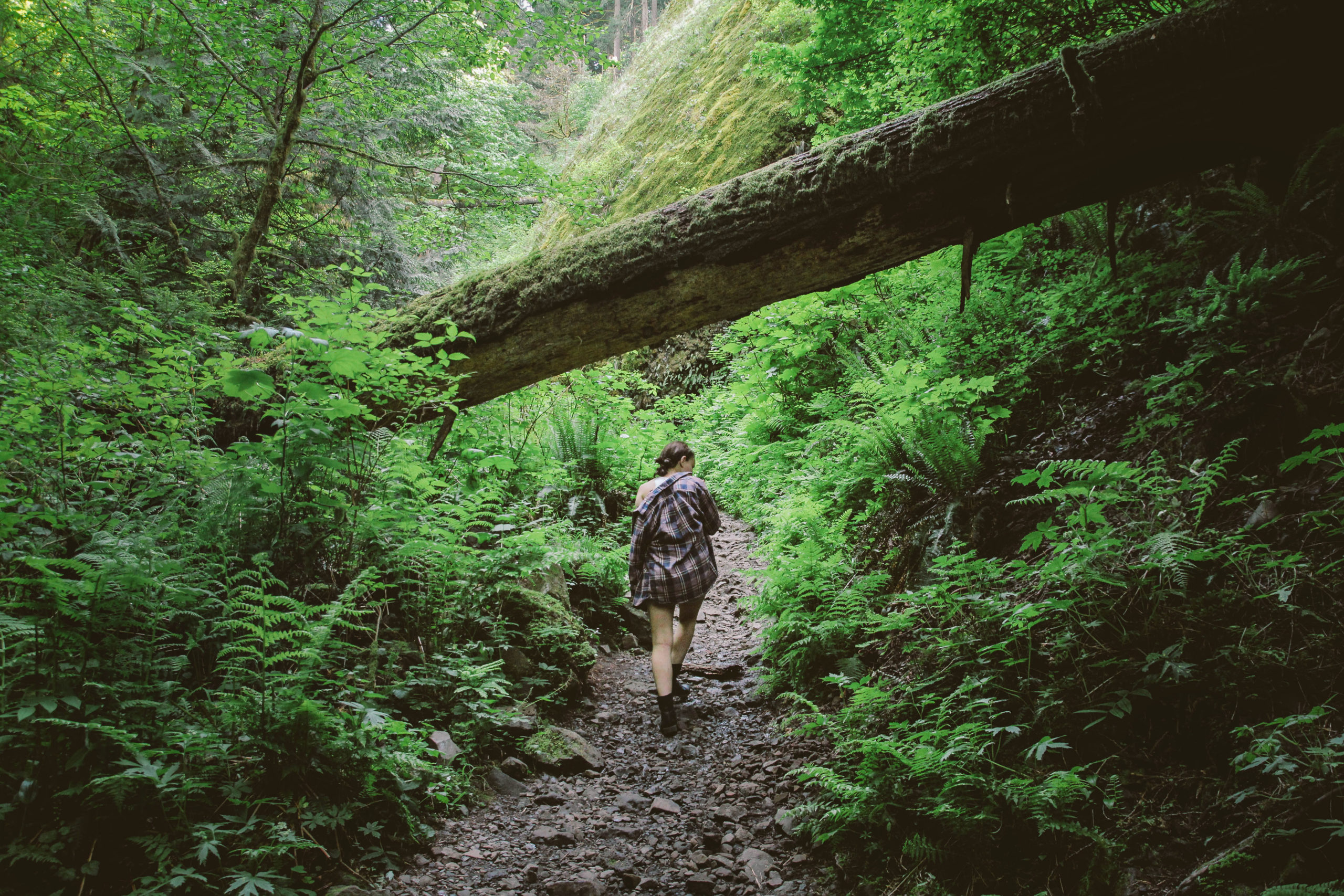 A woman hikes under a log in a lush Oregon landscape.