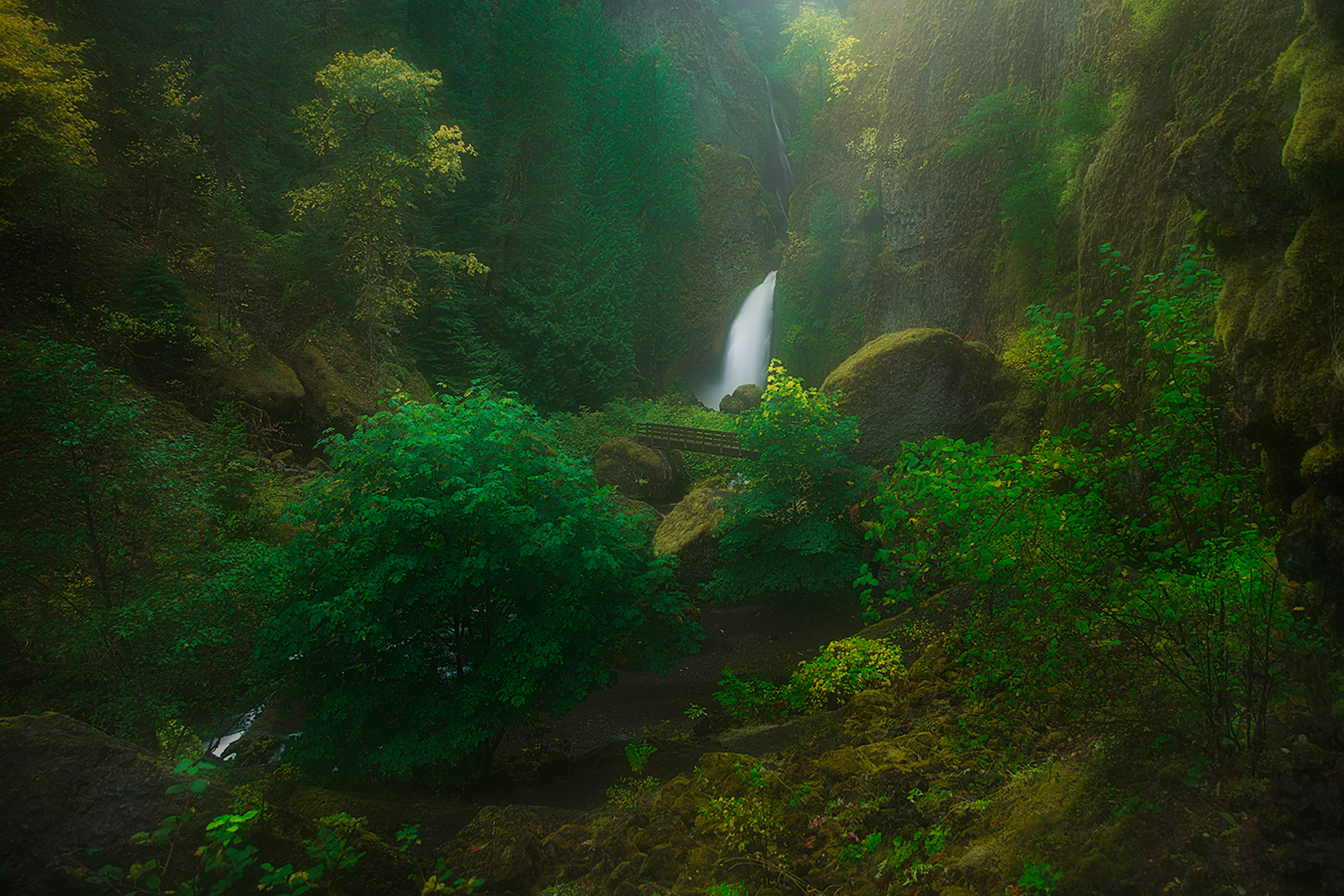A gorgeous waterfall with light streaming down through a lush landscape of trees and brush in Oregon.