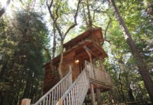 Treehouse at Out'n'About Treesort.