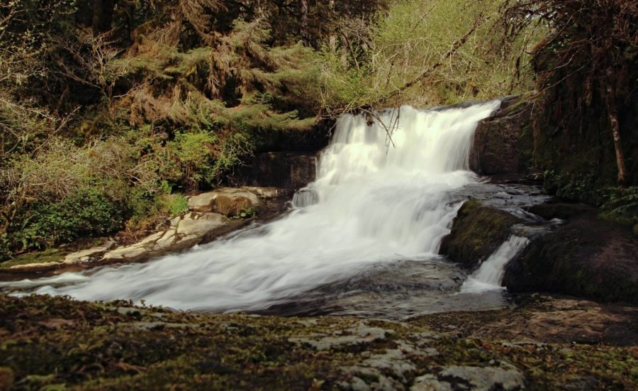 alsea falls things to do in oregon