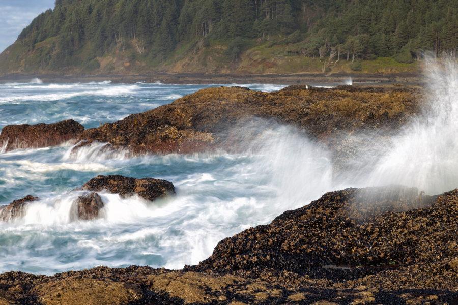 cape perpetua oregon rocks and waves