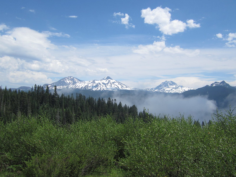 Three snowcapped mountains over a forest in Oregon.