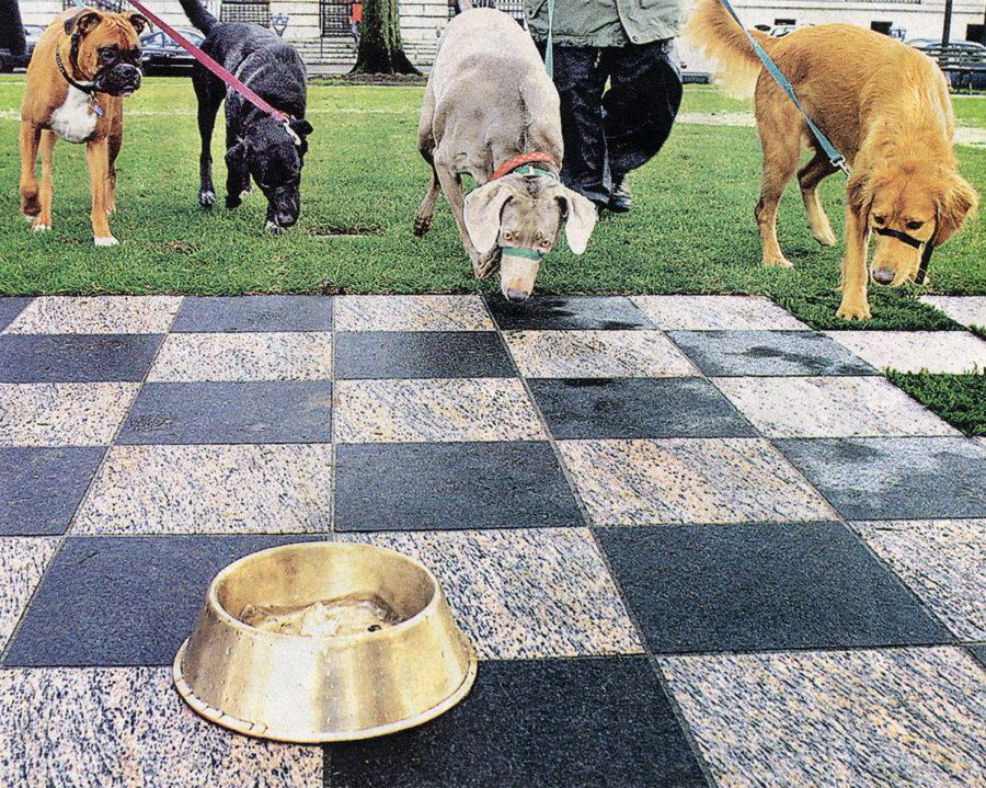 dogs sniff public art bronze dog bowl portland oregon